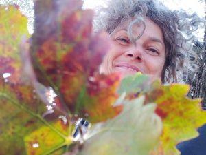 mio-padre-e-un-albero-autunno